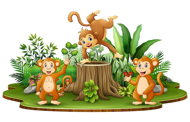 Happy monkey group with green plants