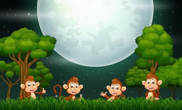 자연 풍경에 행복 원숭이