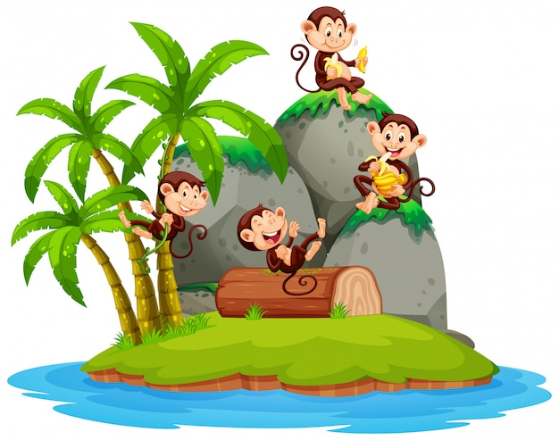 Happy monkey on isolated island