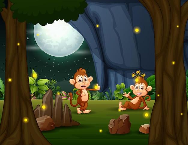 Счастливые обезьяны наслаждаются природой ночью со светлячками