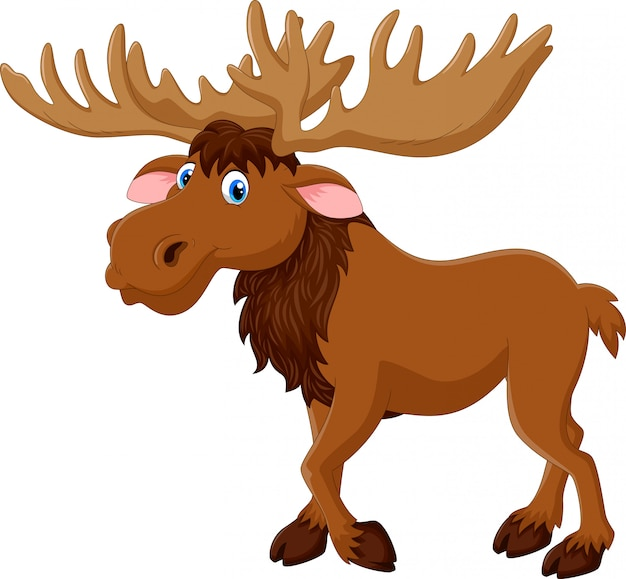Happy moose cartoon