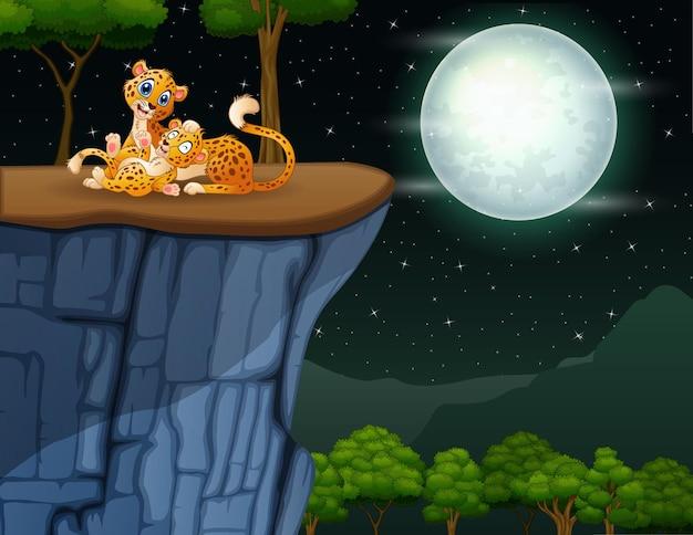 Счастливая мать гепард со своим детенышем, играющим на скале