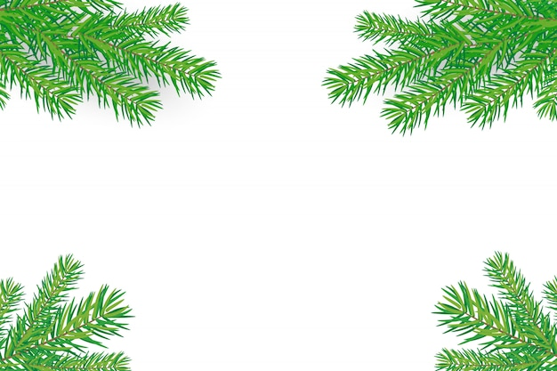 Happy new year background with christmas trees branches