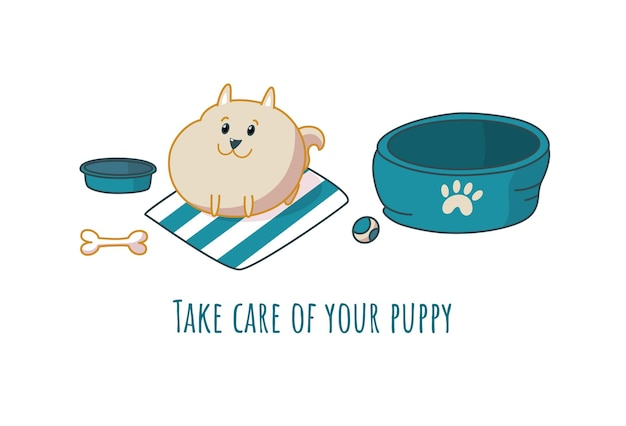 Happy pomeranian puppy with toys. vector illustration in cartoon style