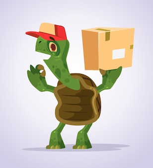 Happy smiling turtle courier character showing ok sight cartoon illustration