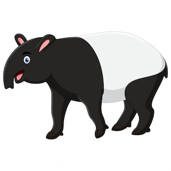 Happy tapir cartoon isolated