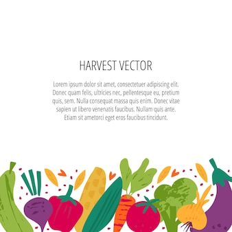 수확 수집 평면 벡터 배너 템플릿입니다. 잘 익은 야채, 비트 뿌리, 후추, 옥수수 속 장식 테두리와 카피스페이스. 텍스트 공간이 있는 농업 박람회, 유기농 생산 포스터