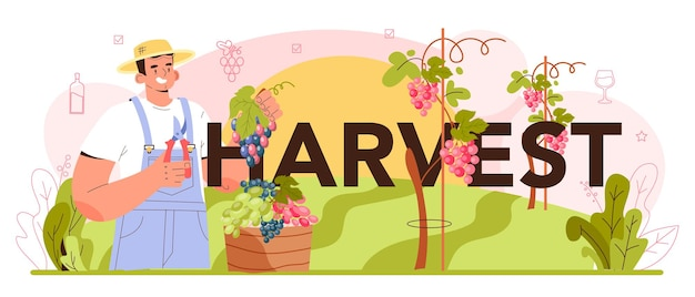 Harvest typographic header wine production grape selection cultivation