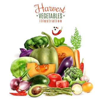 Harvest of vegetables illustration