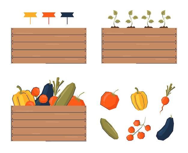Сбор урожая и овощей в ящики, посадка саженцев