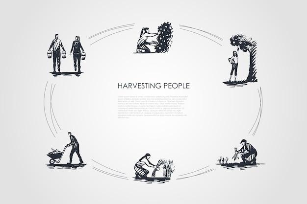 수확 사람들 개념 설정 그림