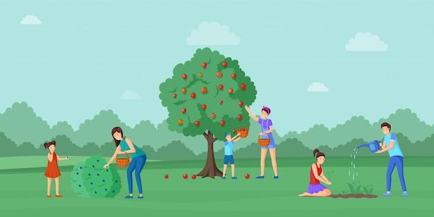 Harvesting season in countryside  illustration.