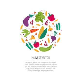 Harvesting season hand drawn vector banner template. fresh ripe vegetables round frame with text space. autumn festival, fall season holiday celebration poster, postcard design element