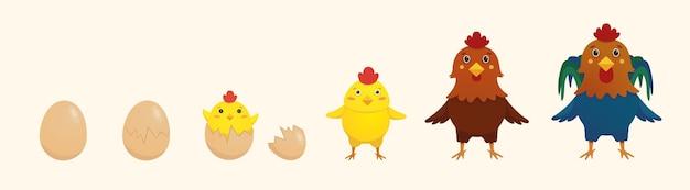 卵からひよこを孵化させる鶏と雄鶏