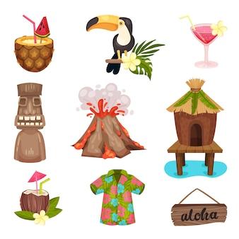 Набор символов гавайев с туканом и вулканом