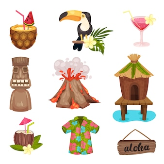 Hawaii symbols set with toucan and volcano