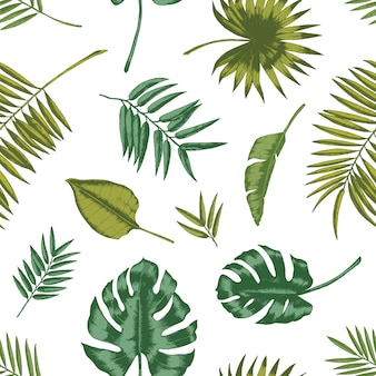 Hawaiian seamless pattern with tropical foliage on white background. natural backdrop with green leaves of exotic rainforest plants or trees. summer illustration for wrapping paper, wallpaper.