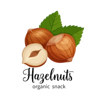 Hazelnut in cartoon style