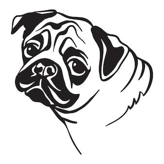 Head of pug dog vector illustration