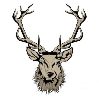 Head of stag illustration