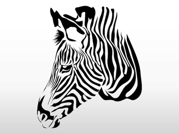 Head of a zebra