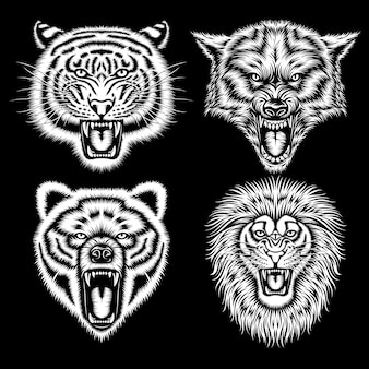 Heads of angry animals