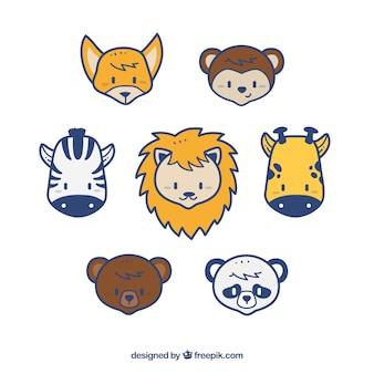 Heads wild animals