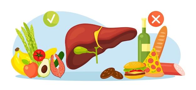 人間の肝臓、胆嚢のための健康的で有害な食品。食事療法のセット、良いと不健康な栄養。病気の原因。脂っこいハンバーガー、アルコール、ピザ、サラミ、アボカド、サーモン、果物、野菜