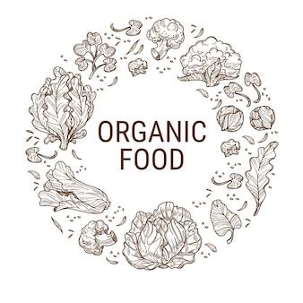 Здоровая диета, питание и употребление чистой пищи. листья капусты и салата, органические продукты и экологические ингредиенты для детоксикации и сбалансированного питания. монохромный набросок эскиза, вектор в плоском стиле