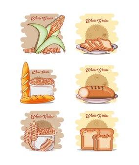 Healthy food diet set products vector illustration design