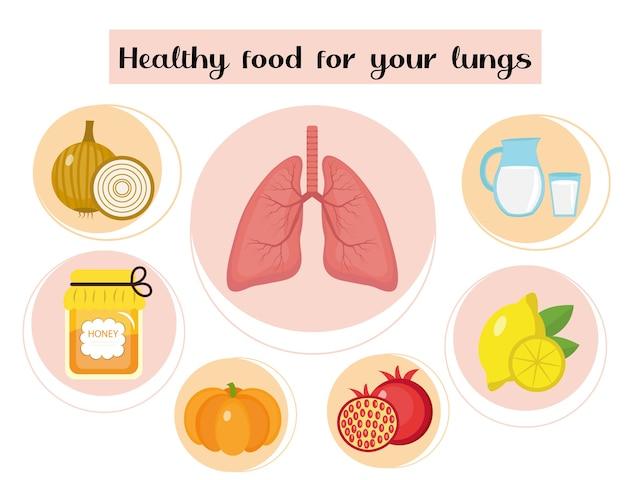 폐 건강에 좋은 음식. 음식과 비타민, 의학, 호흡기 질환 예방의 개념.