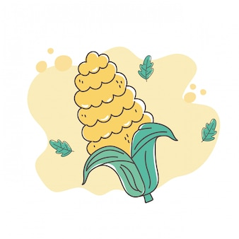 Healthy food nutrition diet organic corn grain icon