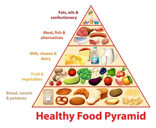 健康食品ピラミッドグラフ