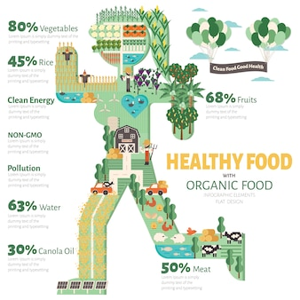 Healthy food with organic food infographic