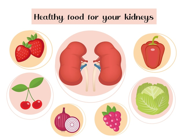 Healthy food for your kidneys infographic.