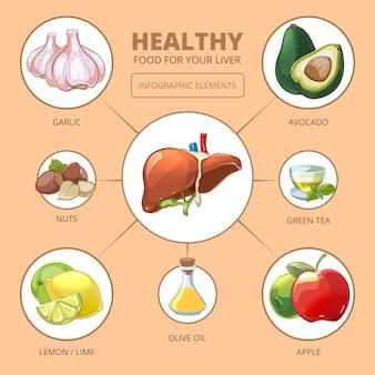 肝臓の健康食品。リンゴとオリーブ、ライムまたはレモン、緑茶、ナッツとニンニクのデザイン、ベクトルイラスト。医療健康インフォグラフィック
