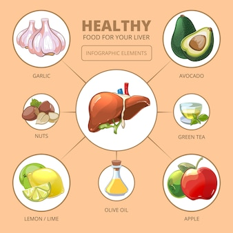 Alimenti sani per il fegato. mela e oliva, lime o limone, tè verde, noci e aglio, illustrazione vettoriale. infografica di salute medica