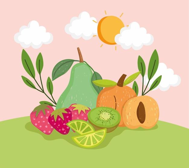 건강한 신선한 과일