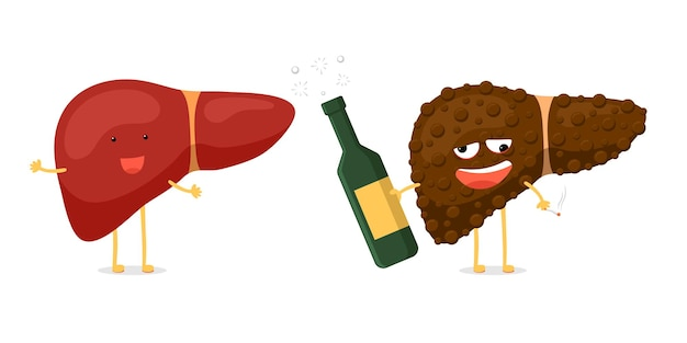 Healthy fun and sick unhealthy ill drunk liver character hold in hand alcohol bottle and cigarette. human exocrine gland organ destruction concept. vector hepatic comparison illustration