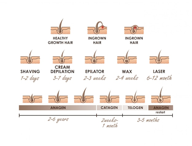 Healthy growth hair. ingrown hair. hair growth phases. different methods of hair removal. types of epilation with timeline actions
