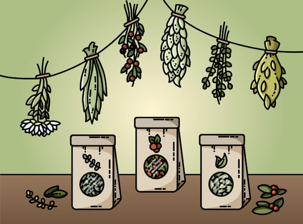 Healthy herbs and natural tea flat style vector illustration