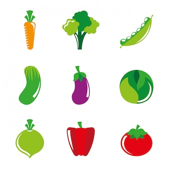 Healthy lifestyle over white background vector illustration