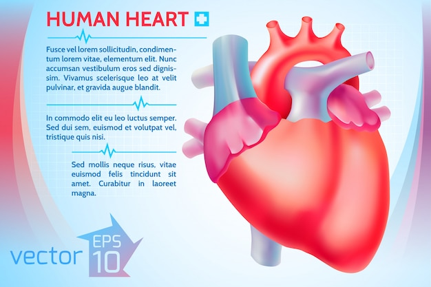 Шаблон здоровой медицины с текстом и красочным человеческим сердцем на световой иллюстрации