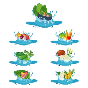 Healthy natural vegetables in fresh water splash illustration