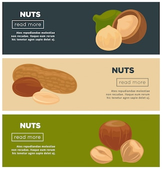 Healthy nutritious nuts promotional banners