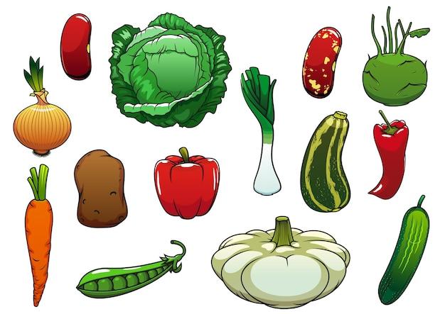 健康的な有機キャベツニンジンペッパーポテトオニオンキュウリズッキーニエンドウ豆パティパンスカッシュリーキコールラビインゲンマメ野菜。