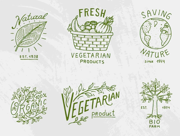 Healthy organic food logos set or labels and elements for vegetarian and farm green natural vegetables products,  illustration. badges healthy life. engraved hand drawn in old sketch.