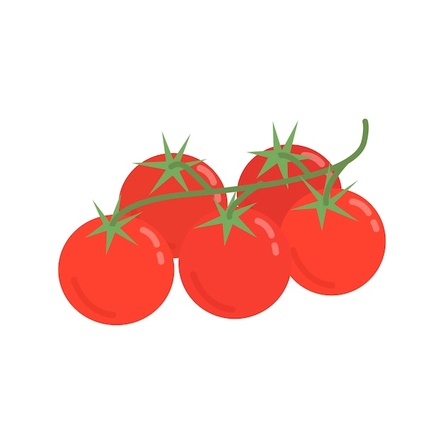 Healthy red tomatoes graphic illustration