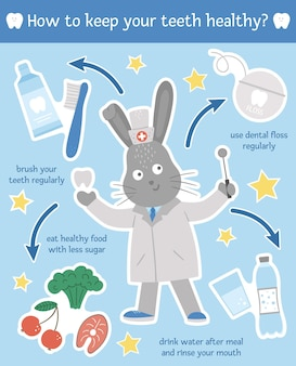 Healthy teeth habits illustration cute dentist infographics for kids vector funny card template with smiling doctor rabbit dental care picture for children dentist baby clinic brochure design