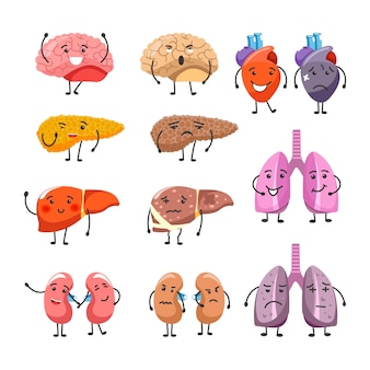 Healthy and thick organs with faces and limbs